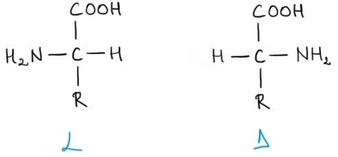 amnoacizi enantiomeri.jpg