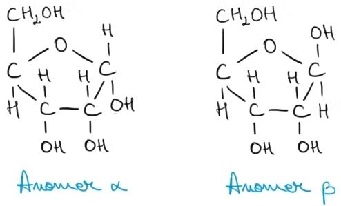 anomerii ribozei.jpg