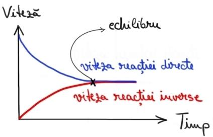 grafic 2 refacut.jpg